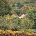 Herfst in de Creuse