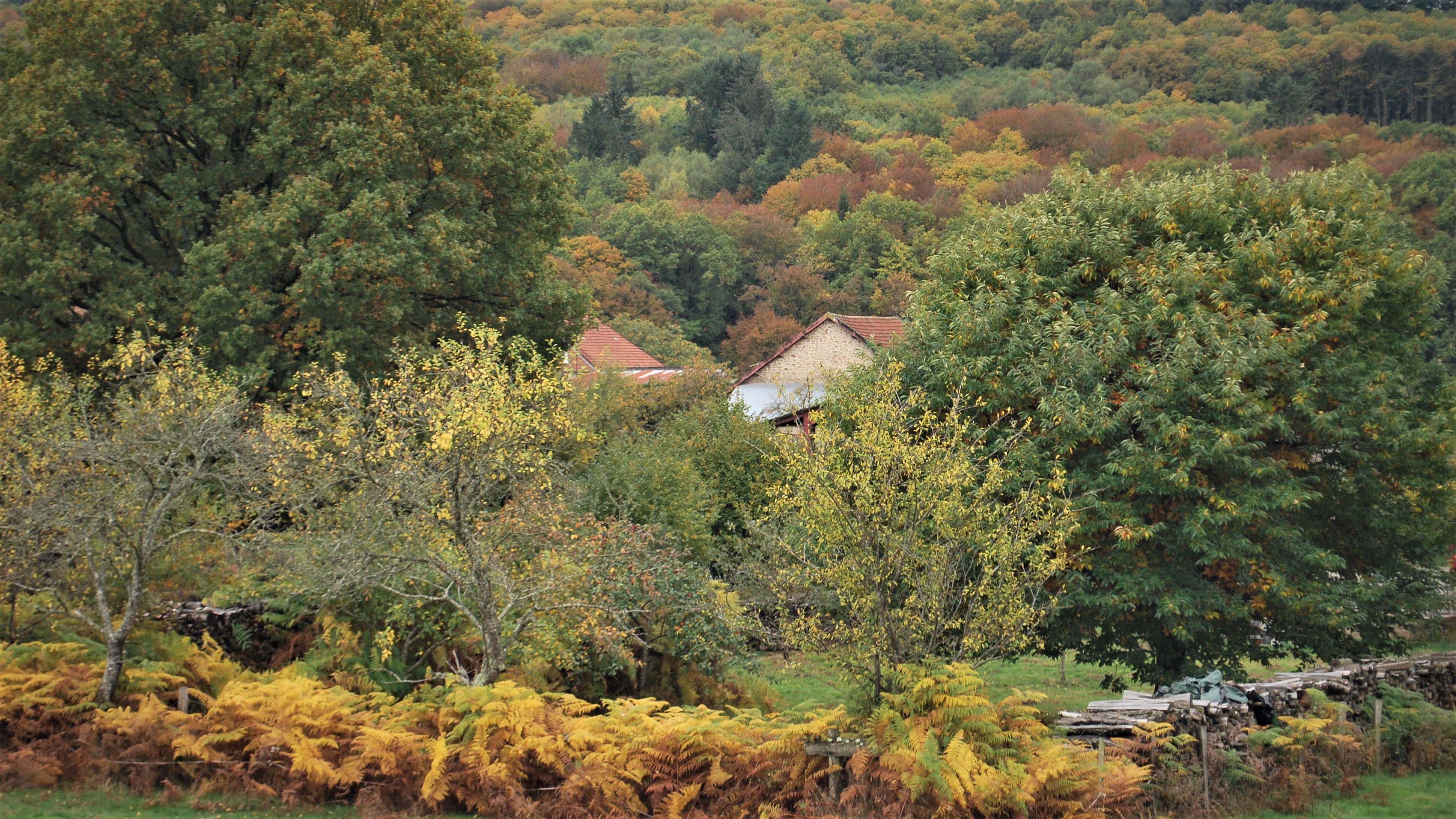 De Creuse in de herfst
